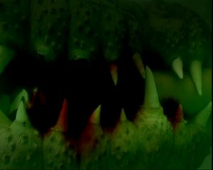 Croc - Das Killerkrokodil