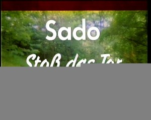 Sado - Stoss das Tor zur Hölle auf