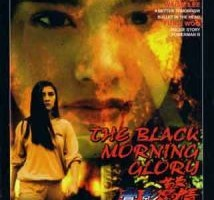 The Black Morning Glory
