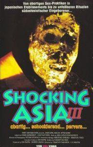 Shocking Asia III